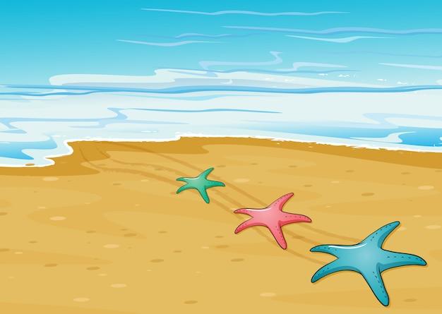 Drie kleurrijke zeesterren in het strand