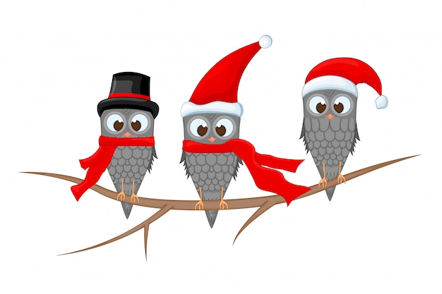 Drie uilen op de tak in muts en sjaal