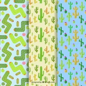 Drie verschillende cactuspatronen