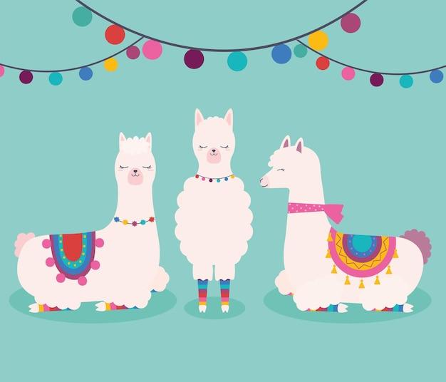 Drie zoete lama's