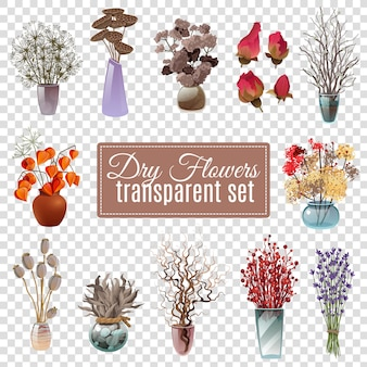 Droge bloemen transparante set