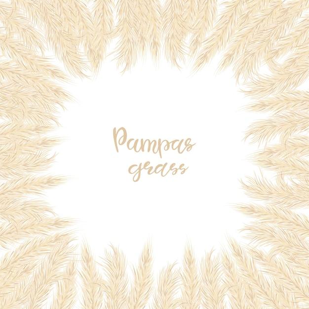 Droog pampasgras frame. een plek voor tekst, een plek om te kopiëren. vector illustratie. decor. vector illustratie.
