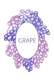 Druif sjabloon. hand getrokken druivenbes illustratie. gegraveerde stijl retro botanische banner.