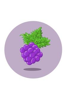 Druiven illustratie