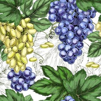 Druiven naadloos patroon