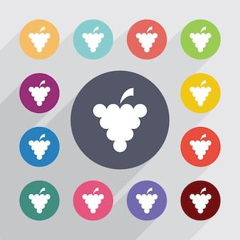 Druiven, plat pictogrammen instellen. ronde kleurrijke knopen. vector