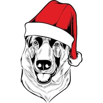 Duitse herdershond in kerstmuts voor kerstmis
