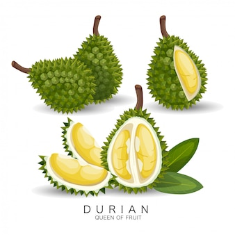 Durian is erg lekker fruit