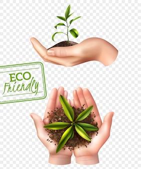 Eco-vriendelijk ecologieconcept