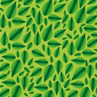 Ecologie tropische bladeren plant backround
