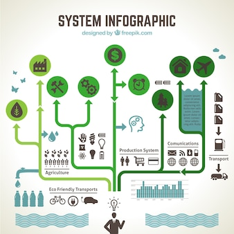 Ecologisch systeem infographic
