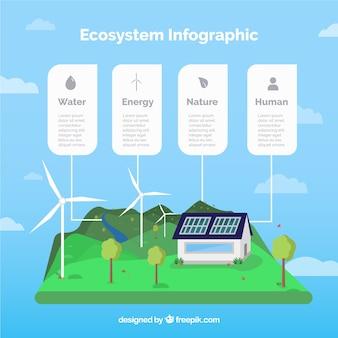 Ecosysteem infographics concept