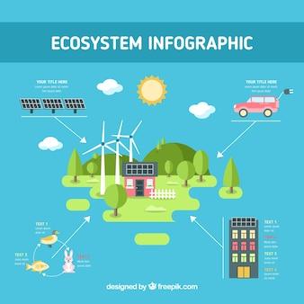 Ecosysteem infographics