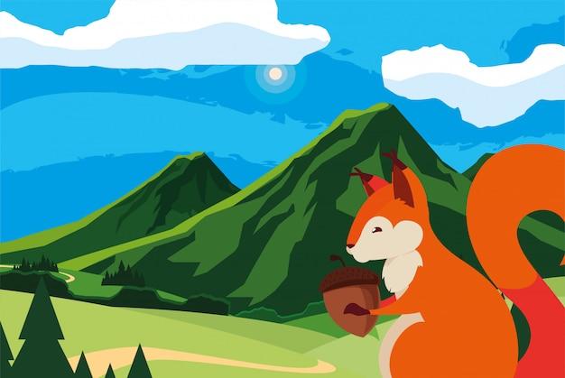 Eekhoorn eikel dier in een natuurlijk landschap