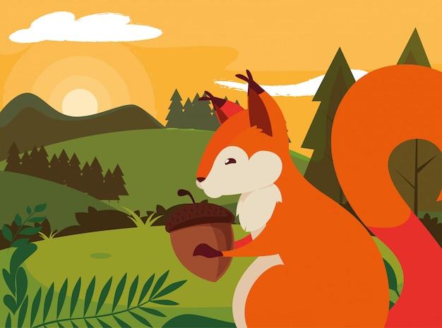 Eekhoorn eikel gelukkig herfst seizoen plat