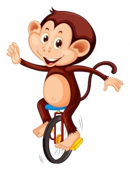 Een aap die eenwieler berijdt