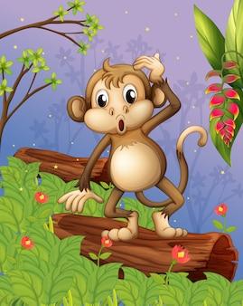 Een aap die in de tuin speelt