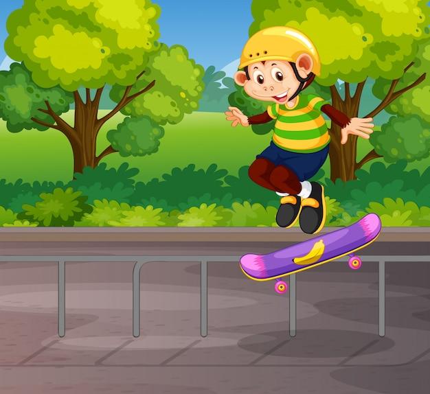 Een aap die skateboard speelt