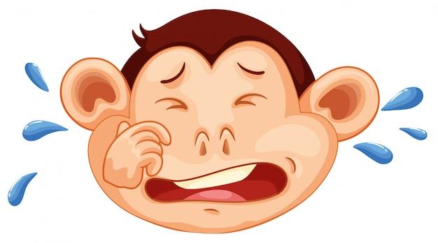 Een aap huilend gezicht