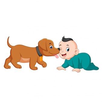 Een baby die met kleine hond speelt