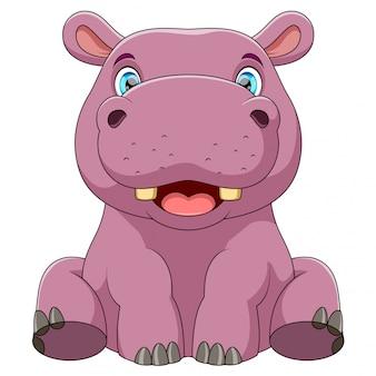 Een baby nijlpaard