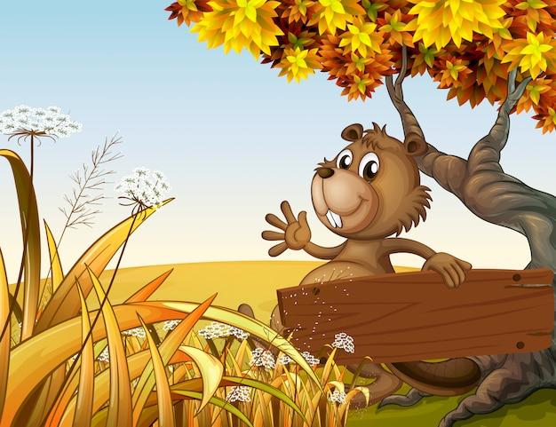 Een bever die onder de boom speelt terwijl hij een leeg houten bord vasthoudt