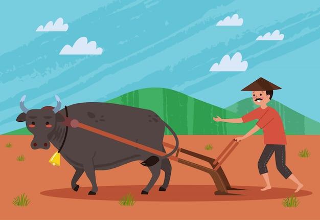 Een boer die een veld ploegt met behulp van een buffel, een veld ploegen is een activiteit die door de boer wordt uitgevoerd om de boerderij los te maken voordat hij wordt geplant.