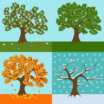 Een boom van elk seizoen ontwerp