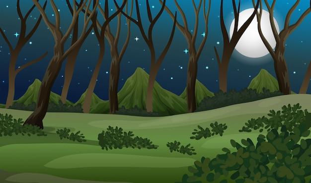 Een bos bij donkere nacht