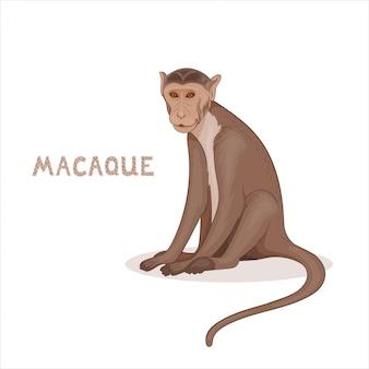 Een cartoon bonnet makaak