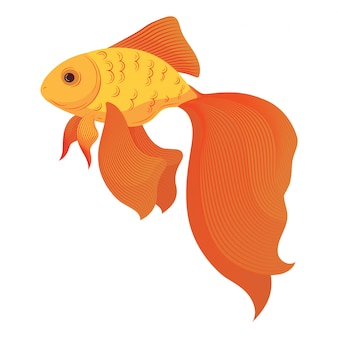Een cartoon goudvis. gestileerde goudvis. aquariumvissen. illusie.
