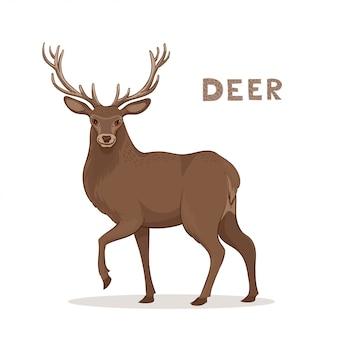 Een cartoon hert met lange hoorns