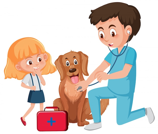 Een dierenarts die voor de hond zorgt