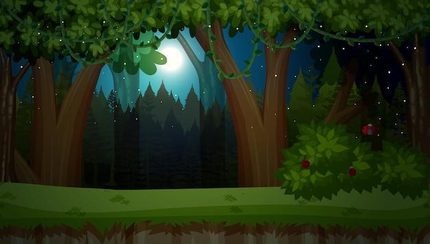 Een donkere nacht in de jungle