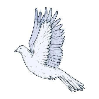 Een duif in vlucht