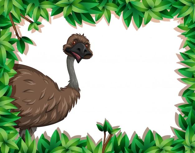 Een emoe in aardkader