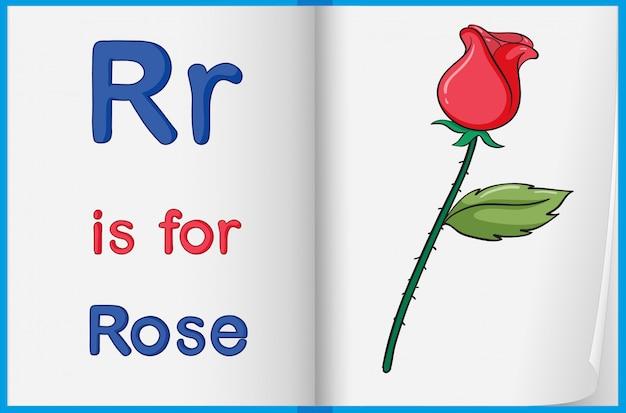 Een foto van een roos in een boek