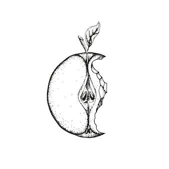 Een gebeten appel.