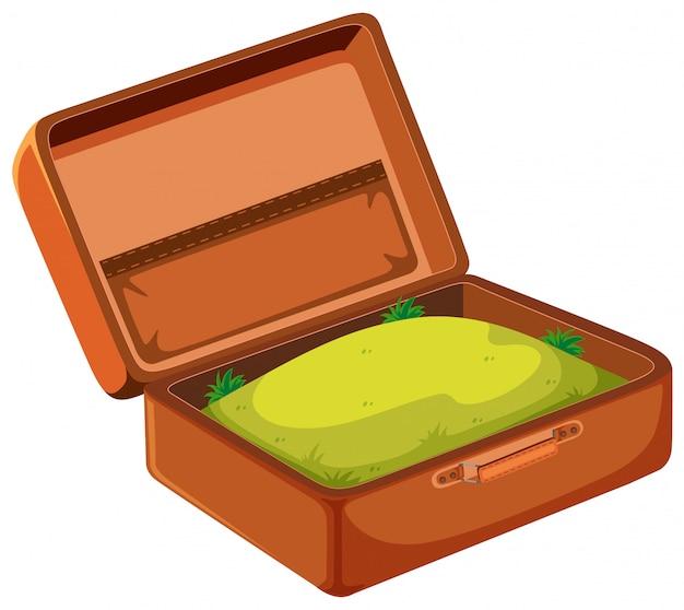 Een gras in koffer
