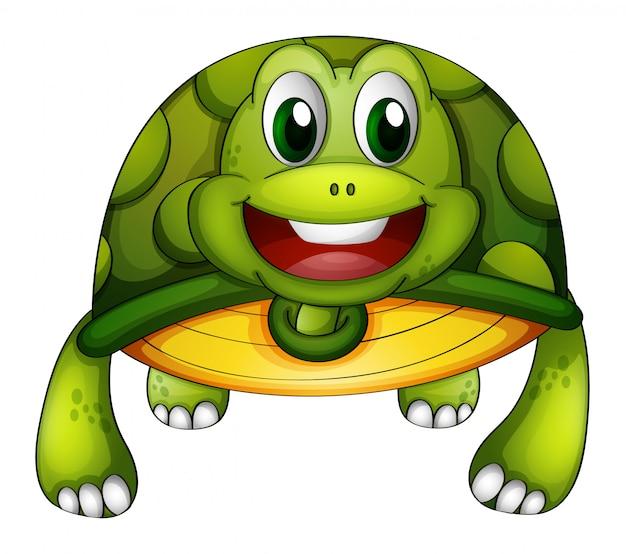 Een groene schildpad