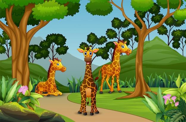 Een groep die van giraf in het bos geniet van