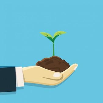 Een hand met grond en groeiende plant