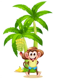 Een heel blij aapje bij de bananenplant