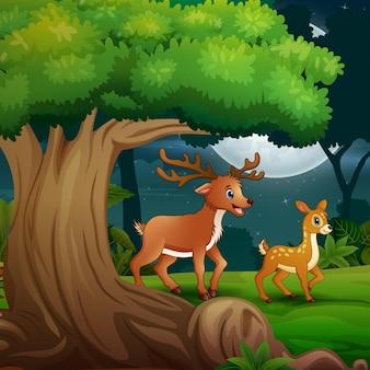 Een hert met haar welp 's nachts in het bos