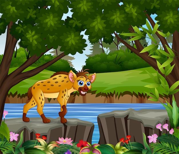 Een hyena die overdag op zoek is naar een prooi