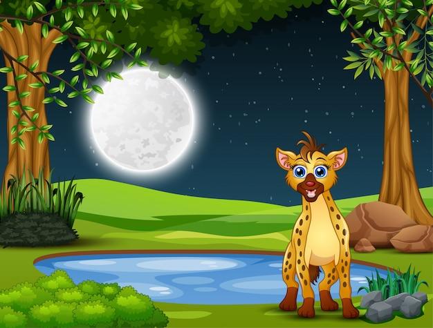 Een hyena die 's nachts op zoek is naar een prooi