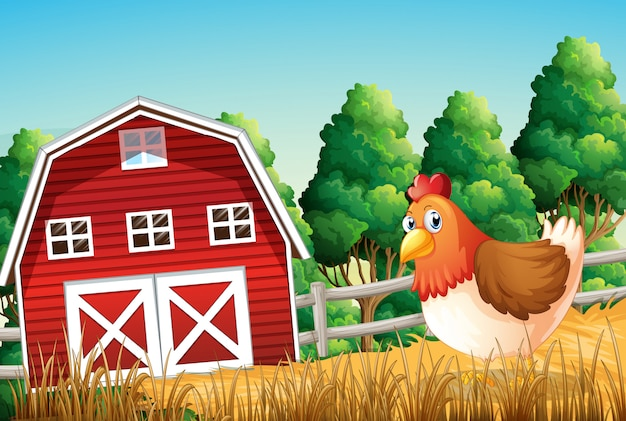 Een kip op landbouwgrond