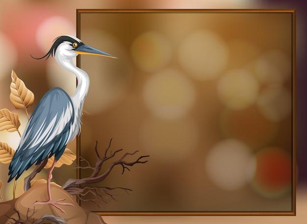 Een kraanvogel op onscherpe achtergrond