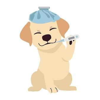 Een labrador retriever wordt ziek en koorts met een thermometer in platte vectorstijl