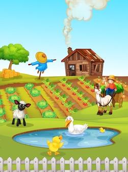 Een landelijk landschap van landbouwgronden